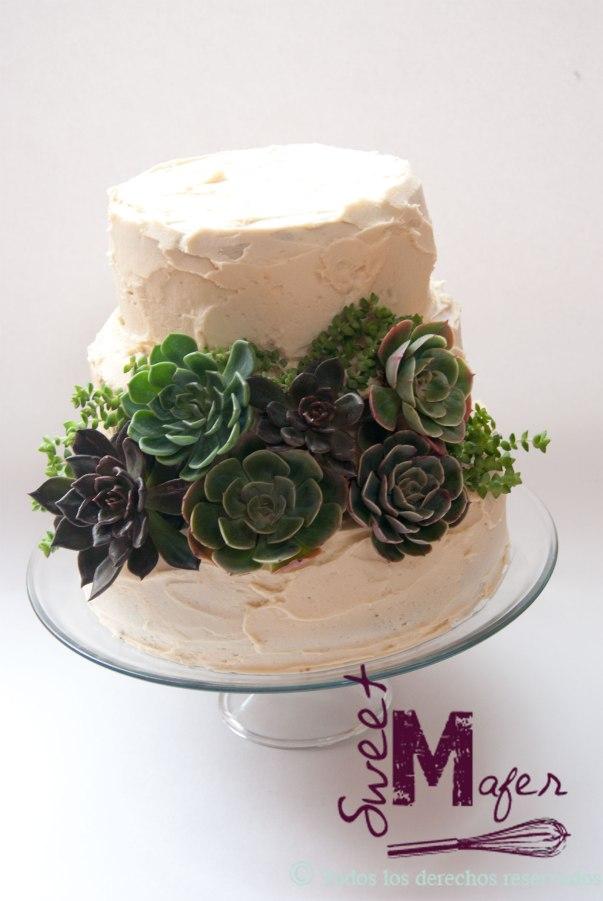 torta-suculentas