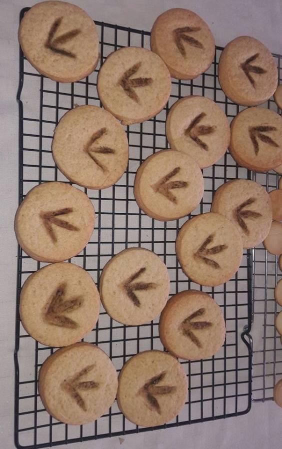 galletas dino listas
